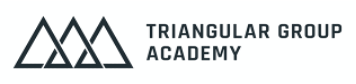 Logo Triangular group academie